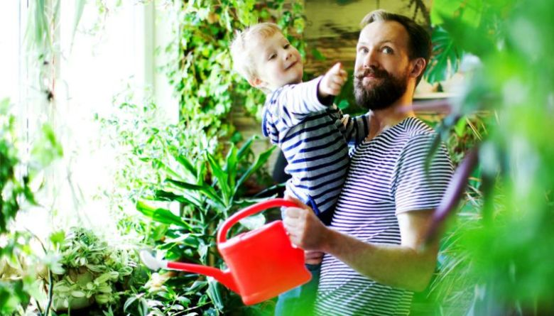 natureza-plantas-pai-filho-morar-1017-1400x800